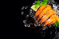 camarones Gambas frescas en un fondo negro Mariscos en el hielo estrellado con las hierbas Comida sana, cocinando fotografía de archivo libre de regalías
