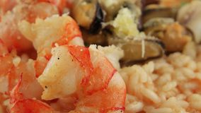 Camarones, mejillones y primer del calamar en una placa del arroz (risotto) almacen de video