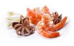 Camarones, pulpo; y calamar. Mariscos aislados Fotos de archivo libres de regalías