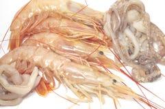 Camarones y calamar Imagenes de archivo