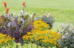 Camas de flor coloridas Fotografía de archivo