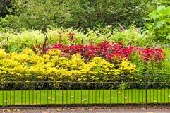 Camas de flor coloridas en parque Fotografía de archivo libre de regalías