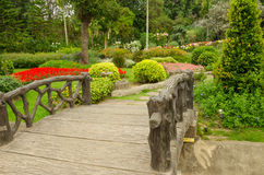 Camas de flor coloridas no parque bonito no jardim Tailândia Foto de Stock Royalty Free