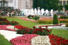 Camas de flor do desenhista no parque da cidade Imagens de Stock