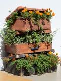 Camas de flor en una maleta vieja (viaje, viaje, agencia de viajes, d Fotos de archivo libres de regalías