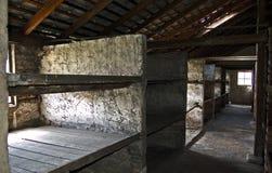 Camas de la piedra del cuartel de Birkenau imagenes de archivo