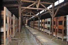 Camas de madera en el cuartel, campo de concentración de Birkenau Fotos de archivo libres de regalías
