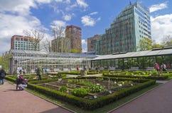 Camas do jardim com plantas medicinais e estufas em g botânico Imagem de Stock