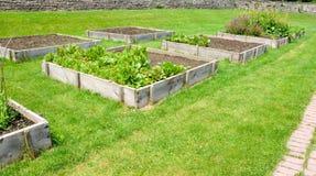 Camas levantadas del jardín Imagen de archivo libre de regalías