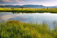 Camas Prairie morning creek and fence fields Royalty Free Stock Images