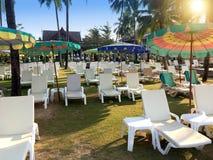 Camas vazias da prancha da praia e pára-sóis brilhantes na costa arenosa com palmeiras Foto de Stock Royalty Free