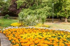 Camas y caminos de flor alrededor de los jardines Staffordshire de Stapenhill foto de archivo libre de regalías