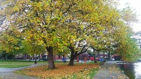 Cambiamenti di autunno fotografia stock