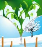 cambiamento di stagione della Inverno-sorgente Fotografia Stock Libera da Diritti