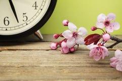 Cambiamento di tempo di primavera Fotografie Stock