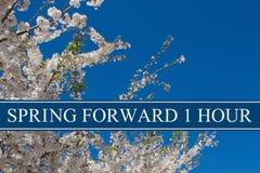 Cambiamento di tempo di primavera fotografia stock libera da diritti