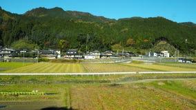 Cambio del color de las hojas en Japón Imagenes de archivo