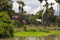 cambod房子河树汁传统高跷的tonle 免版税图库摄影