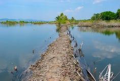 cambodia Images stock