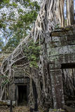 Cambodia, ancient Temple Royalty Free Stock Images