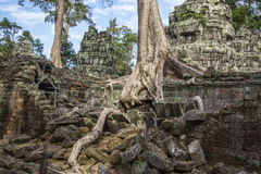 Cambodia, ancient Temple Stock Photos