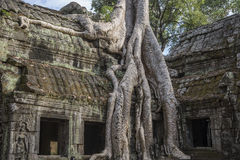 Cambodia, ancient Temple Stock Photography