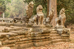 Cambodia, Angkor Archaeological Park Royalty Free Stock Photography