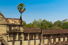 Cambodia, Angkor Archaeological Park Royalty Free Stock Photos