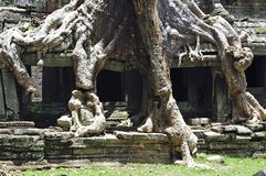 Cambodia Angkor Preah Khan temple Royalty Free Stock Photography