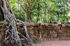 Cambodia. Angkor vat. Royalty Free Stock Images