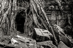 Cambodia. Angkor Wat Royalty Free Stock Photography