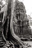 Cambodia. Angkor Wat Stock Image