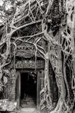 Cambodia. Angkor Wat Stock Photos