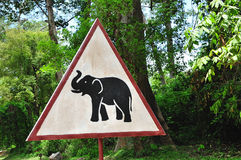 Cambodia; Be careful with animals Stock Photography