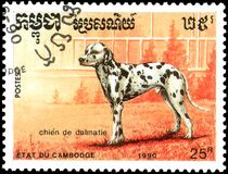 CAMBODIA - CIRCA 1990: postage stamp, printed in Cambodia, shows a Dalmatian dog Royalty Free Stock Images