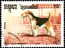 CAMBODIA - CIRCA 1990: postage stamp, printed in Cambodia, shows a Fox Terrier dog Stock Photos