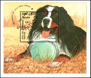 CAMBODIA - CIRCA 1990: postage stamp, printed in Cambodia, shows a Bernese Dog Stock Photos