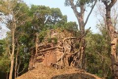 cambodia Città di Sambor Prei Kuk Capo Ream Temple Provincia del Kampong Città del Kampong Immagine Stock