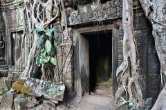 Cambodia culture Stock Images