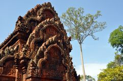 Cambodia - Detail of Benteay Srei, (the pink temple). Angkor Wat, Siem Reap area (Cambodia) - Detail of Benteay Srei temple, also called the pink temple Stock Photo
