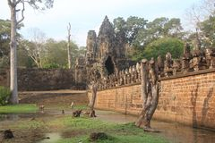cambodia Ingresso a Angkor Thom Città di Siem Reap Provincia di Siem Reap Y Immagine Stock Libera da Diritti