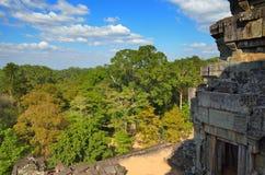 Cambodia jungle Royalty Free Stock Photography