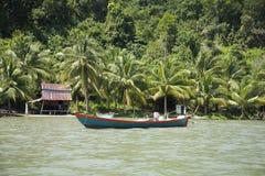 Cambodia jungle Royalty Free Stock Photo