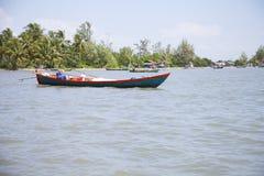 Cambodia jungle Royalty Free Stock Image