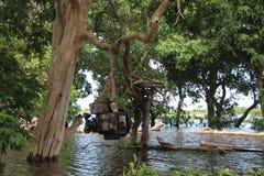 cambodia Lac sap de Tonle Province de Siem Reap Village de Pluk de Kampong Photos libres de droits