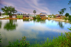 Cambodia lake near phnom penh Royalty Free Stock Image
