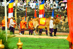 Cambodia The Royal Ploughing Ceremony siem reap angkor bayon presh vihear. The Royal Ploughing Ceremony is one of the mostnimportant annual royal traditional Royalty Free Stock Photography