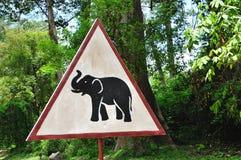 Cambodia; Seja cuidadoso com animais fotografia de stock
