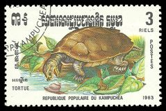 Reptiles, Freshwater Turtle. Cambodia - stamp printed 1983, Memorable issue of offset printing, Topic Wildlife Fauna, Series Reptiles, Freshwater Turtle Stock Images