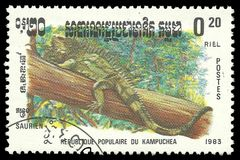 Cambodia Reptiles, Iguana. Cambodia - stamp printed 1983, Memorable issue of offset printing, Topic Wildlife Fauna, Series Reptiles, Iguana Royalty Free Stock Photo